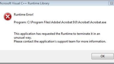 Adobe Acrobat 9.0 Runtime Error
