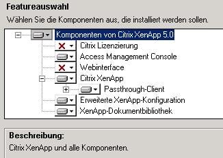 xenapp-komponentenauswahl