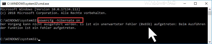 Es ist ein unerwarteter Fehler (0x65) aufgetreten
