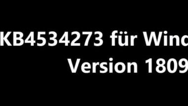 Download KB4534273 für Windows 10 Version 1809 Buildnummer 17763.973
