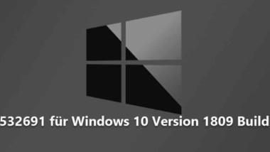 Update KB4532691 für Windows 10 Version 1809 Build 17763.1039