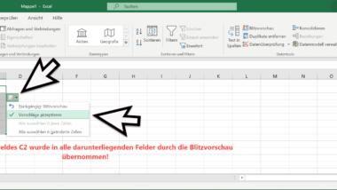 Excel Blitzvorschau – Geniale Funktion zur Übertragung von Formatierungen