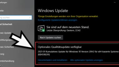 KB4598291 für Windows 10 Version 2004 und 20H2 (19041.789 und 19042.789)