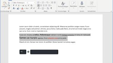 Formatierungen im Word schnell entfernen mit STRG + Leertaste