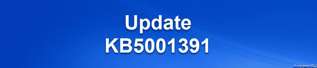 Update KB5001391