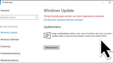 Windows Update Fehler 0x8007000d